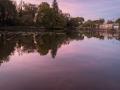 Etang Bois Pouvreau (Ménigoute)-7555