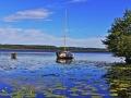 Lac de Léon (40) 1  .jpg