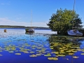 Lac de Léon (40) 2  .jpg