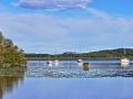 lac de léon (40) 3 .jpg